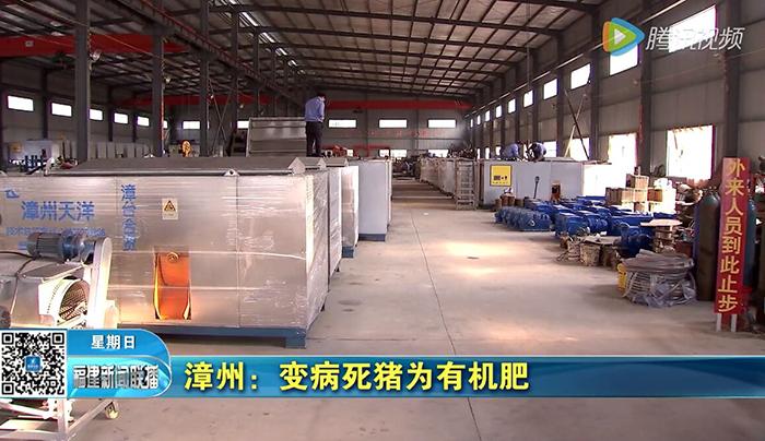 漳州:变病死猪为有机肥--福建电视台综合频道