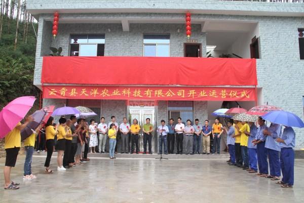 云霄县天洋农业废弃物乐天堂官方网站处理场投入运行