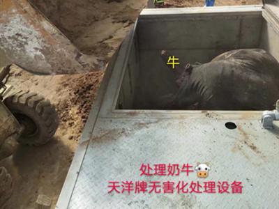 同乐城登入_官方首页渭南市某牧场