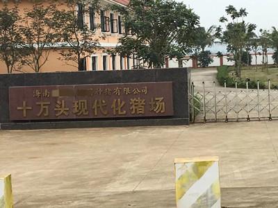 同乐城登入_官方首页某种猪有限公司十万头现代化猪场